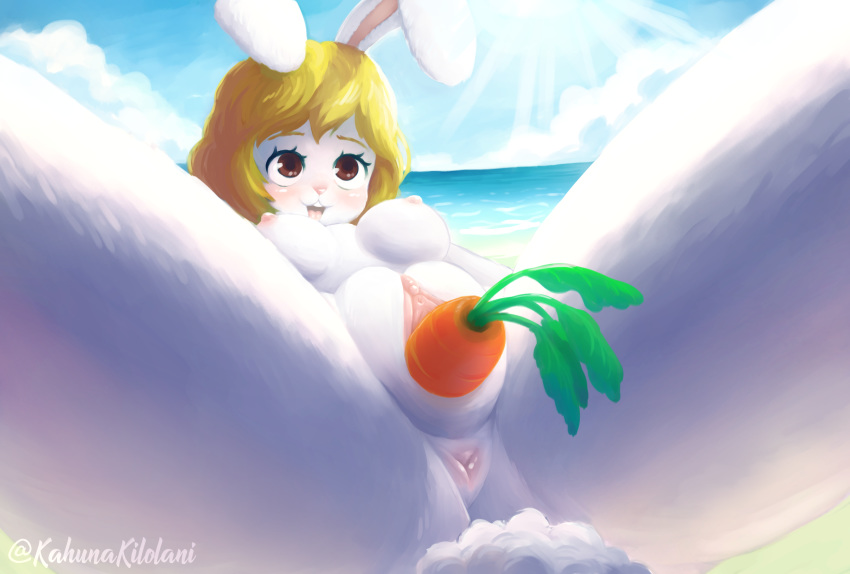 and one nami naked robin piece How big is a dinosaur penis